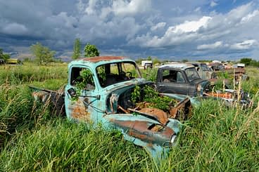 A turquoise 1950s Chevy five window pickup trucks in a Minnesota junkyard on the prairie.
