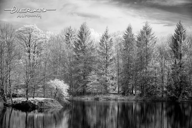 A pond with a small island surrounded by woods, a black and white infrared landscape photograph.