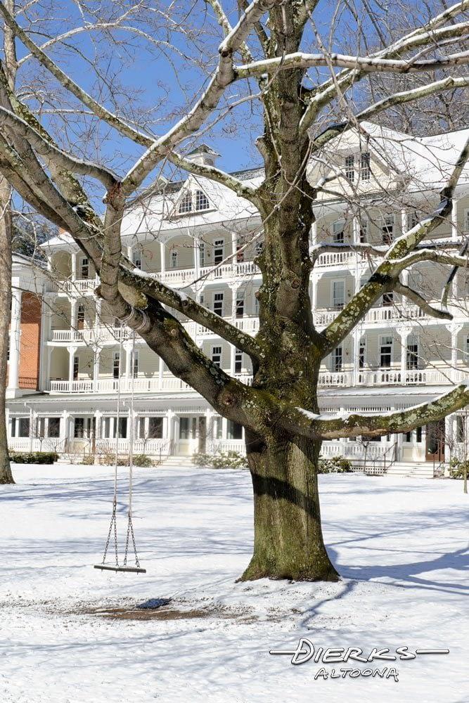 Tree swing empty in winter snow
