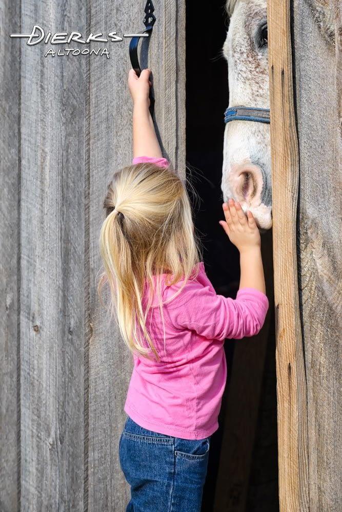 Cute little girl putting away horse at the barn door.